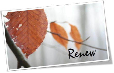 Autumn Resurfacing Package